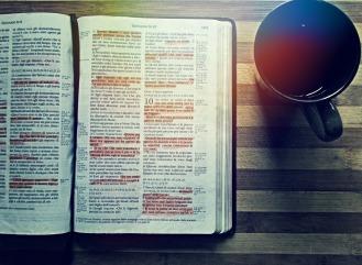 bible-276067_1280
