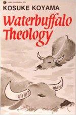 Water Buffalo Theology