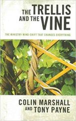 the trellis and the vine.jpg
